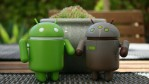 Common Cyber Risks for Android Users